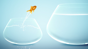 Taking a considered leap of faith: thinking of becoming self-employed?